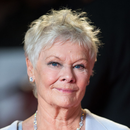 Judi Dench Hair